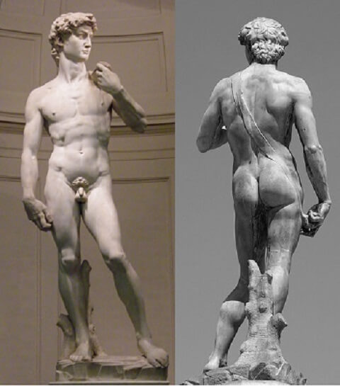 David Michelangelo de face et de dos