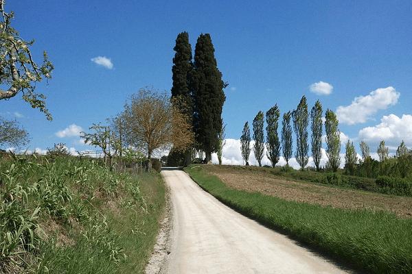Chemin Velo Toscane